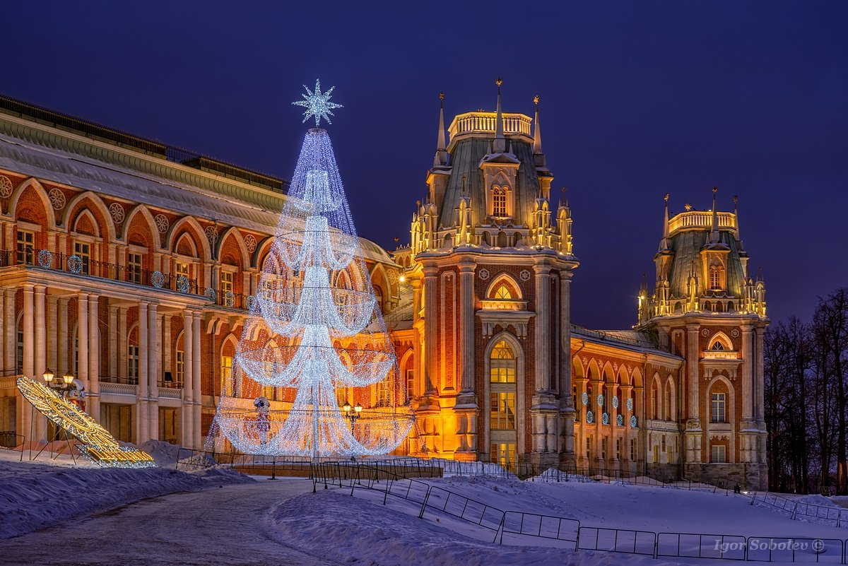 Christmas tree in Tsaritsyno on a winter night