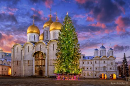 Christmas tree on Cathedral Square in the Moscow Kremlin