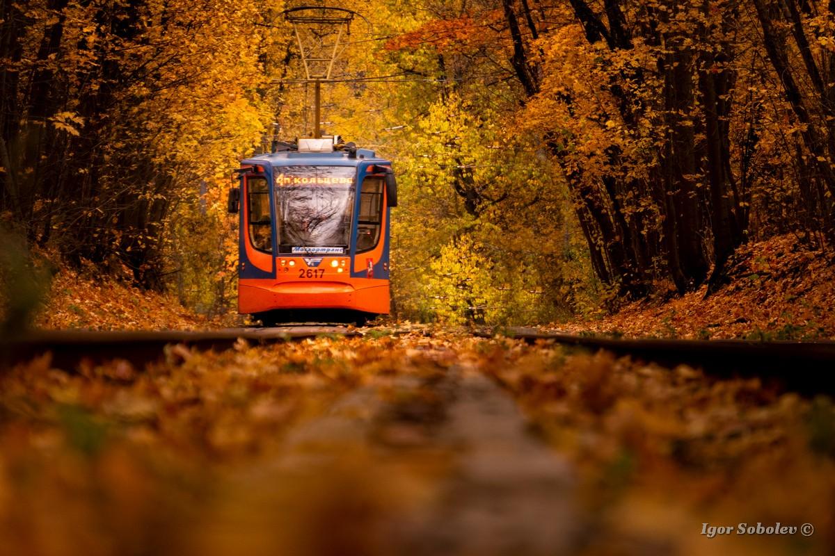 Осенний трамвай / Autumn tram