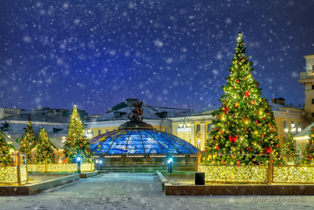 Елки на Охотном ряду в Москве / Christmas trees on Okhotny Ryad in Moscow