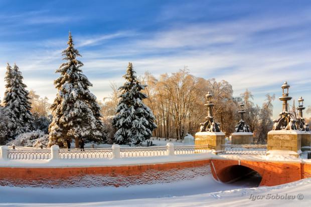 Зима в Кузьминках